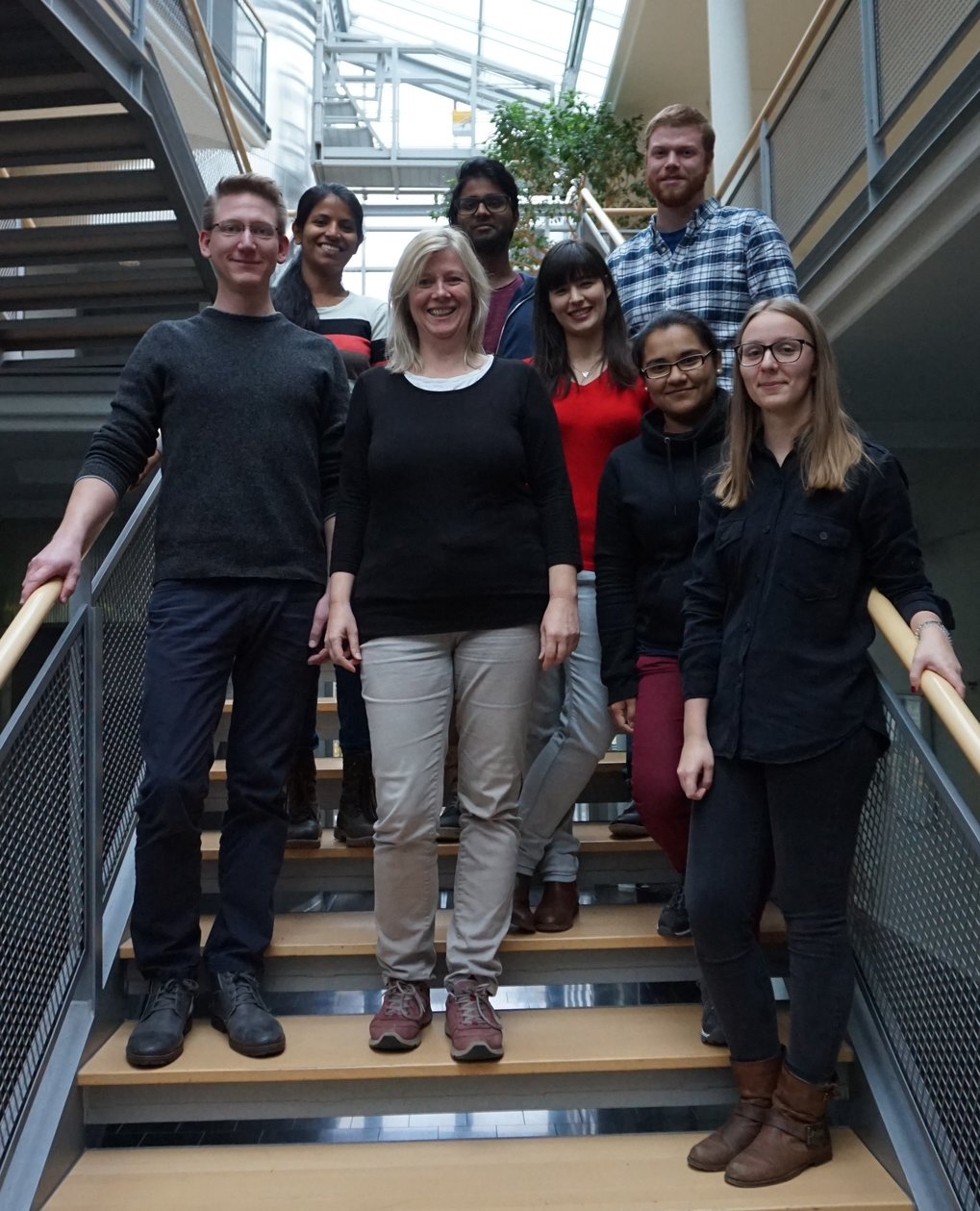 The Ringgaard research group October 2016