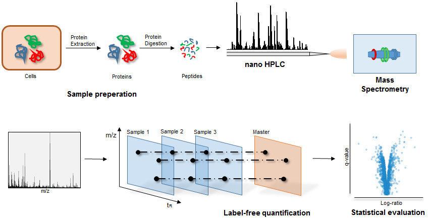 Mass spectrometry & Proteomics | Max Planck Institute for