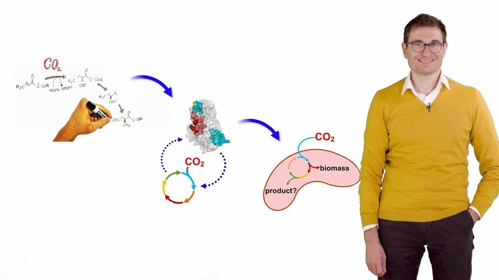 In this video, Tobias Erb describes the principles of building a synthetic metabolic cycle.